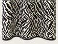 CapeTown_Zebra